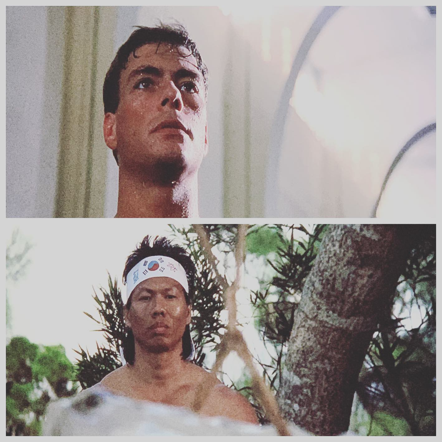 Kumite. A thanksgiving tradition. @jcvd